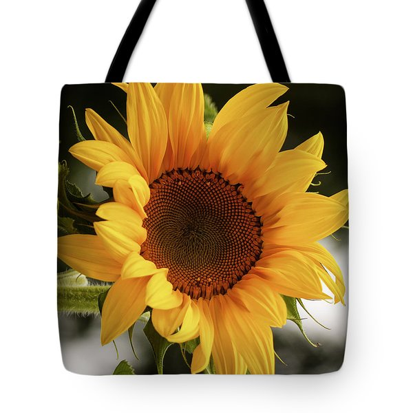 Tote Bag featuring the photograph Sunny Sunflower by Jordan Blackstone