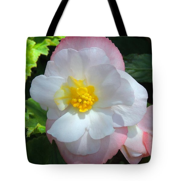 Tote Bag featuring the photograph Sunny by Teresa Schomig