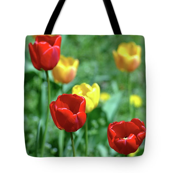 Sunny Tulips Tote Bag