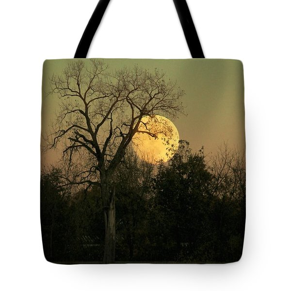 Tote Bag featuring the photograph November Supermoon  by Chris Berry