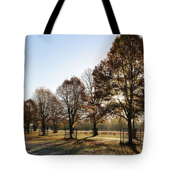 Sunrise And Long Shadows Tote Bag