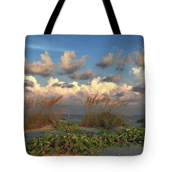 Tote Bag featuring the photograph Sunrise And Sea Oats by Donna Kennedy
