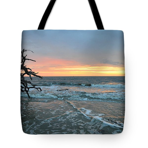 Sunrise At Driftwood Beach 1.3 Tote Bag by Bruce Gourley