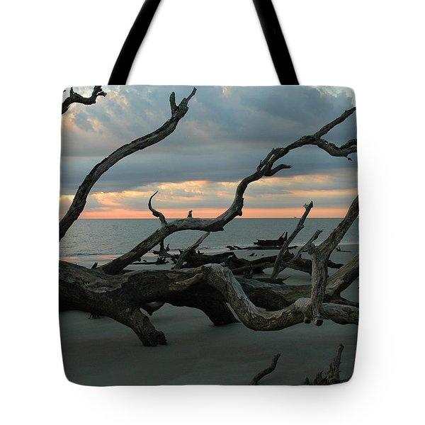Sunrise At Driftwood Beach 4.1 Tote Bag