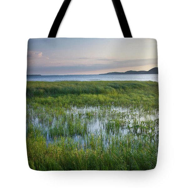 Tote Bag featuring the photograph Sunrise At Sandbar  by Susan Cole Kelly