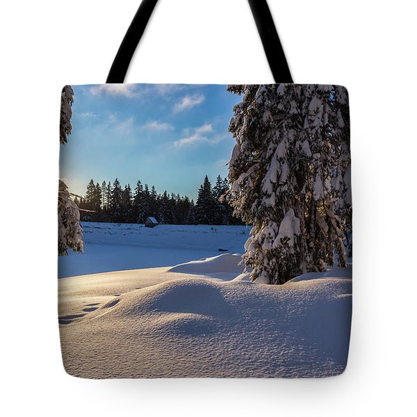 sunrise at the Oderteich, Harz Tote Bag
