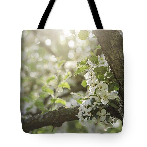Sunrise Blossoms Tote Bag