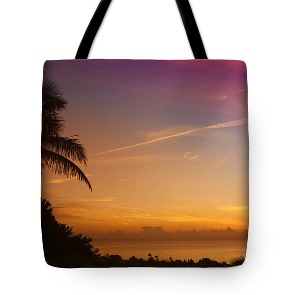 Tote Bag featuring the photograph Sunrise Color by Don Durfee