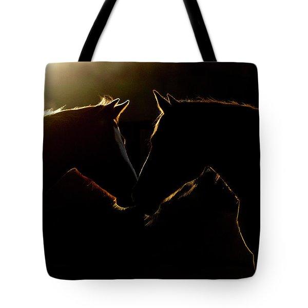 Sunrise Companions Tote Bag