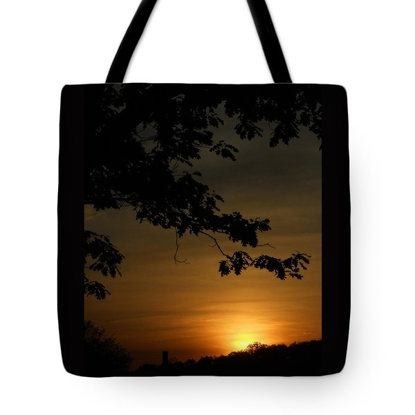 Tote Bag featuring the photograph Sunrise Gold by Diannah Lynch