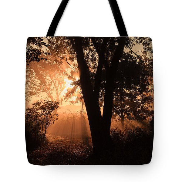 Sunrise In The Marsh 3 Tote Bag
