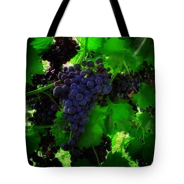 Sunrise In The Vineyard Tote Bag