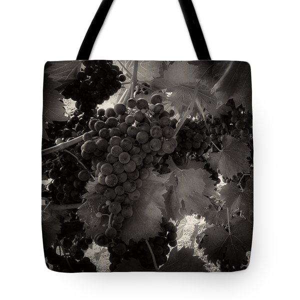 Sunrise In The Vineyard In Black And White Tote Bag