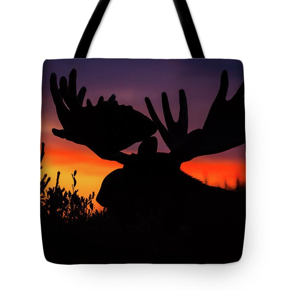 Sunrise King Tote Bag