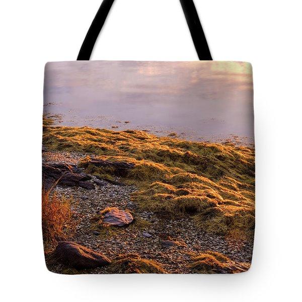 Sunrise Light Tote Bag