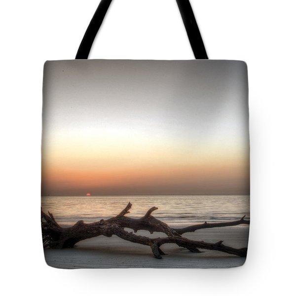Sunrise On Driftwood Tote Bag