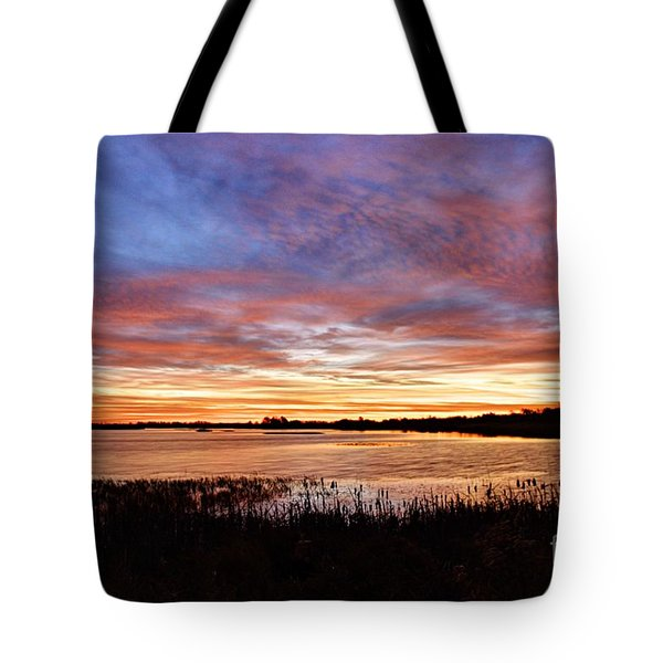 Tote Bag featuring the photograph Sunrise Over The Marsh by Larry Ricker