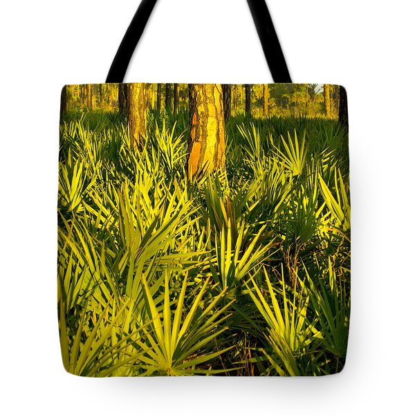 Sunrise Saw Palmettos Tote Bag