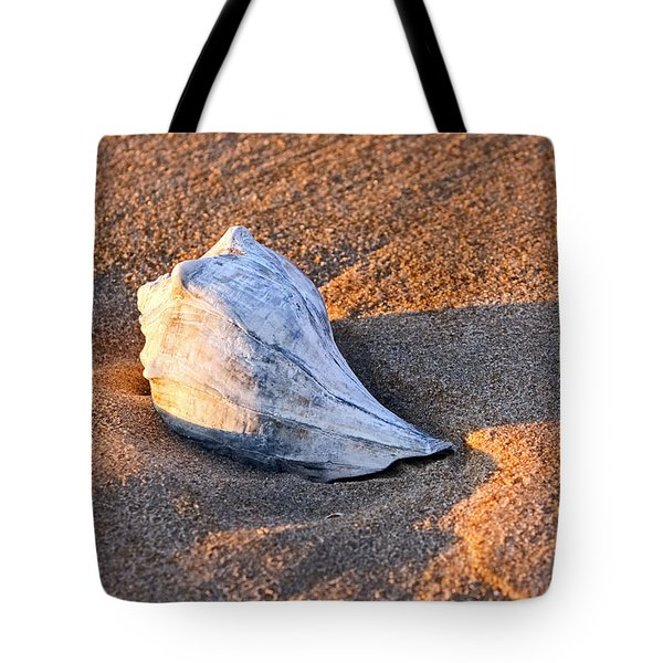 Sunrise Seashell Tote Bag by Allan Levin