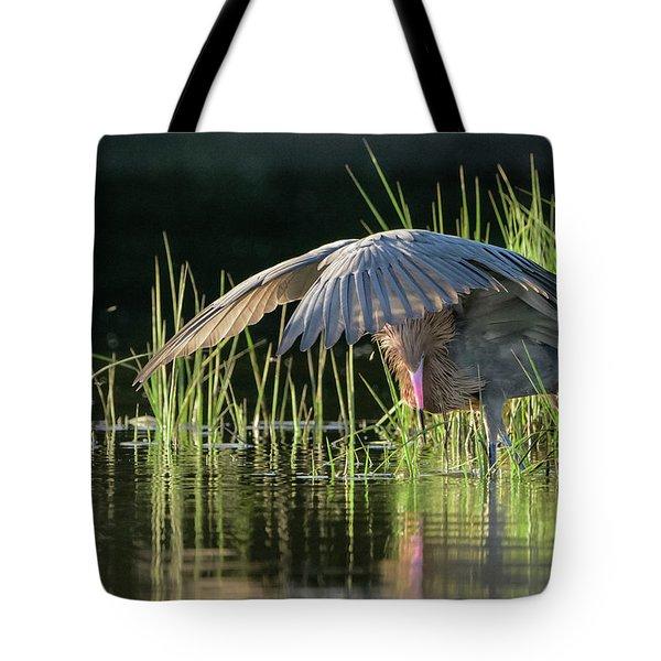 Sunrise Shade Tote Bag by Jim Gray