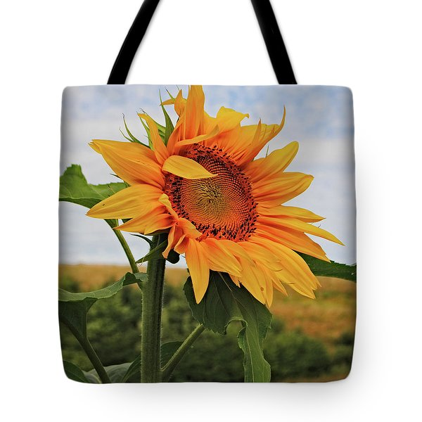 Sunrise Sunflower Tote Bag by Kathleen Sartoris
