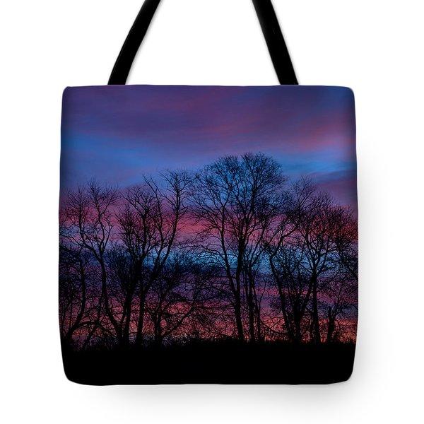 Sunrise Through Barren Trees Tote Bag