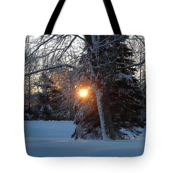 Sunrise Through Branches Tote Bag
