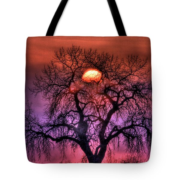 Sunrise Through The Foggy Tree Tote Bag