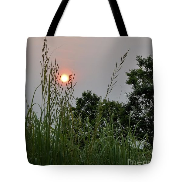 Sunrise Thru The Grass Tote Bag