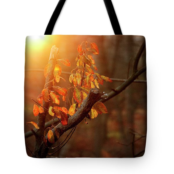 Sunset #8 Tote Bag