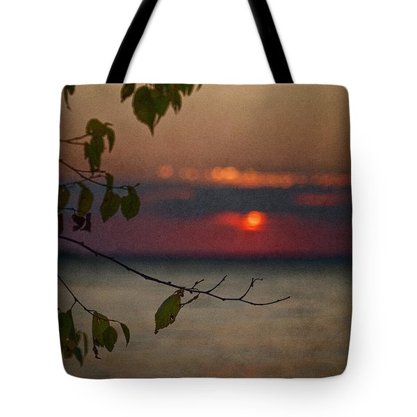 Sunset And Branches Tote Bag
