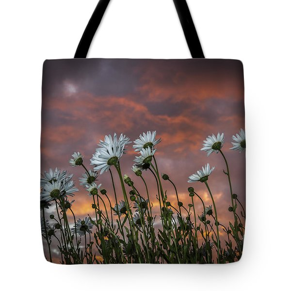 Sunset And Daisies Tote Bag