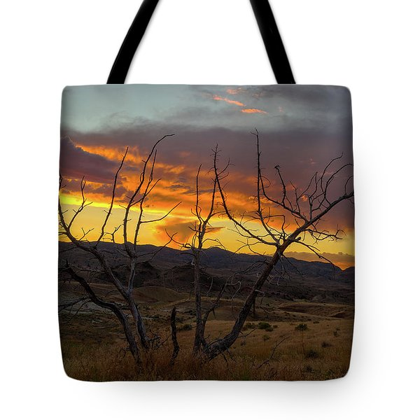 Sunset And Petrified Tree Tote Bag by David Gn