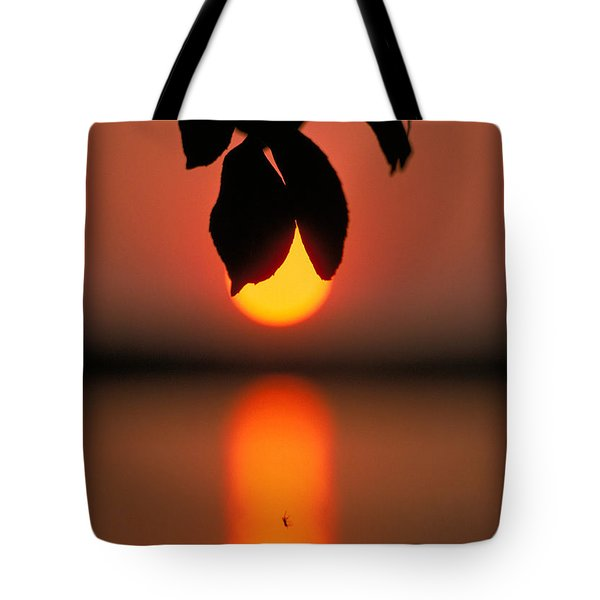 Sunset And Spider Tote Bag by Thomas Firak