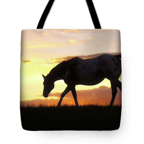 Sunset Appy Tote Bag