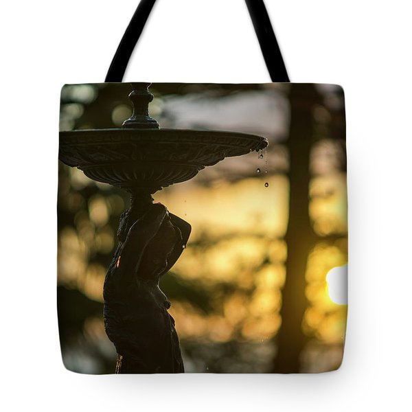 Tote Bag featuring the photograph Sunset At Alameda Apodaca Cadiz Spain by Pablo Avanzini