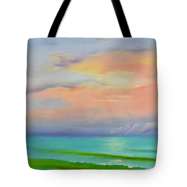 Tote Bag featuring the painting Sunset At Dana Point  by Mary Scott