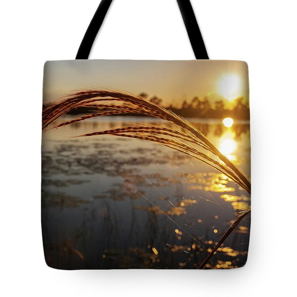 Sunset At Gator Hole 2 Tote Bag