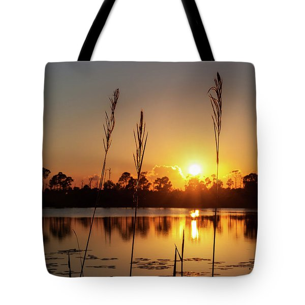 Sunset At Gator Hole 3 Tote Bag