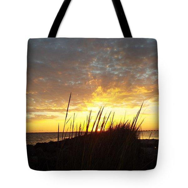 Sunset At Goose Island, Tx Tote Bag