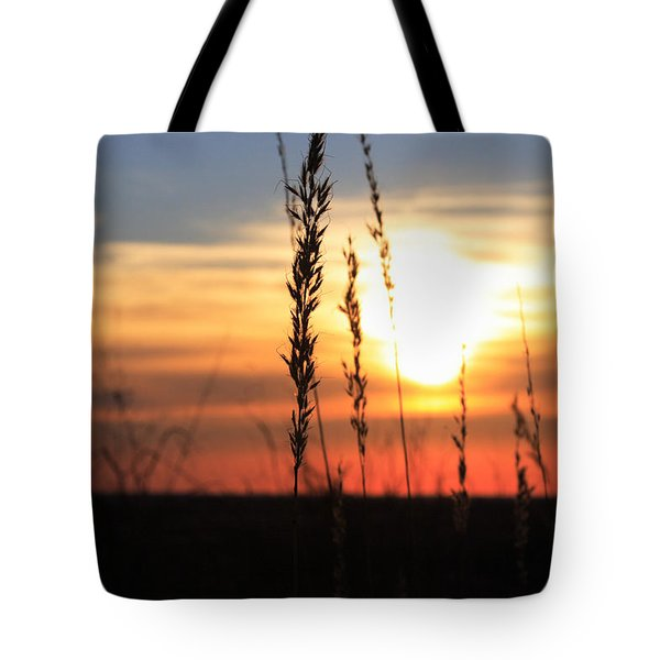 Sunset At Monument Hill Tote Bag by Toni Hopper