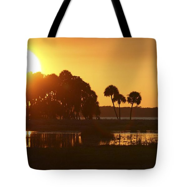 Sunset At Myakka River State Park In Florida, Usa Tote Bag