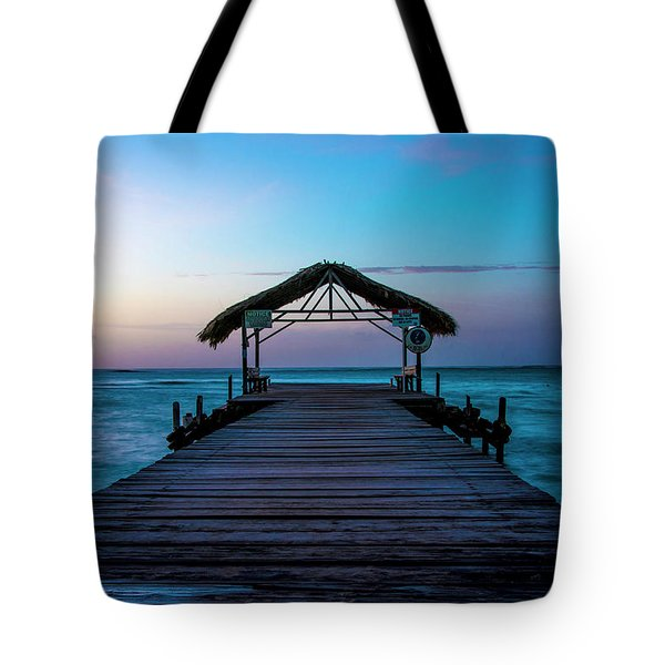 Tote Bag featuring the photograph Sunset At Pigeon Point by Rachel Lee Young