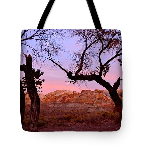 Sunset At The Swell Tote Bag