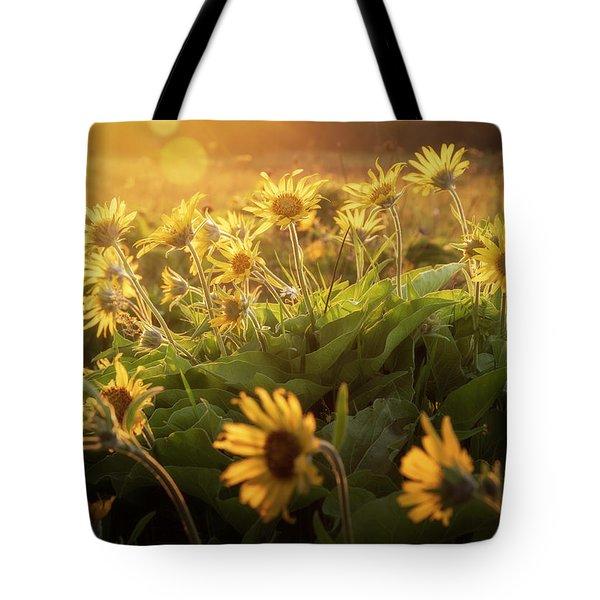 Sunset Balsam Tote Bag