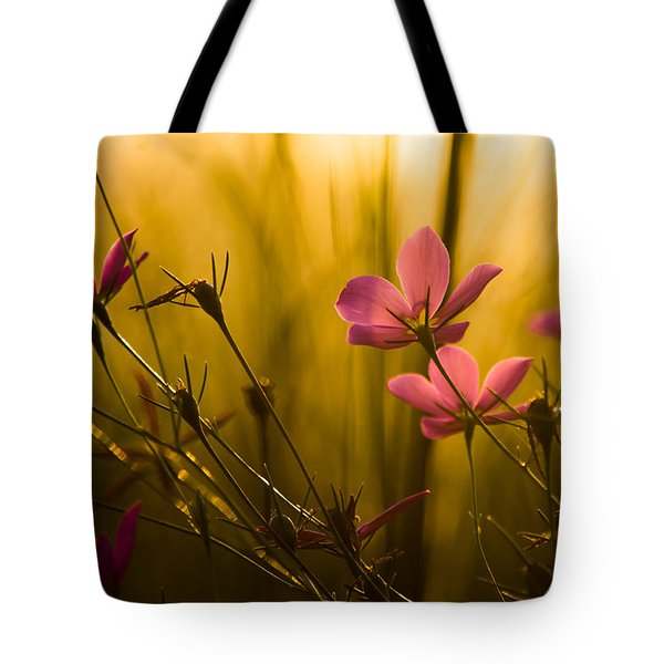 Sunset Beauties Tote Bag