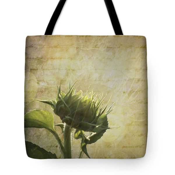 Tote Bag featuring the photograph Sunset Beginnings by Melinda Ledsome