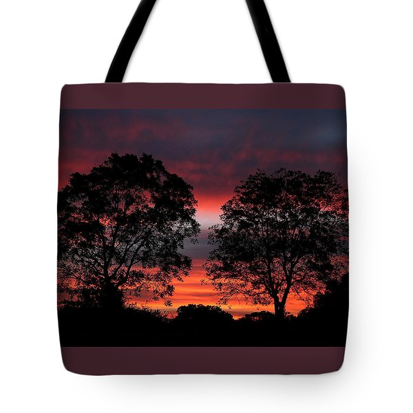 Sunset Behind Two Trees Tote Bag by Sheila Brown