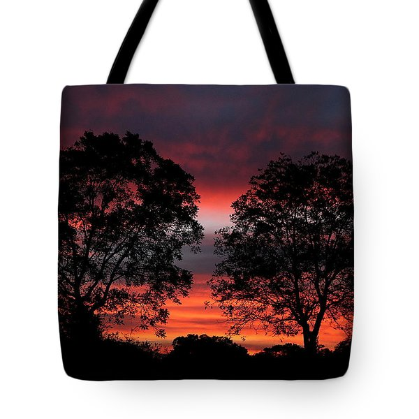 Sunset Behind Two Trees Tote Bag