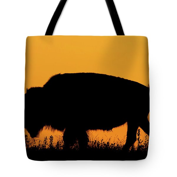 Tote Bag featuring the photograph Sunset Bison 2 by Rob Graham